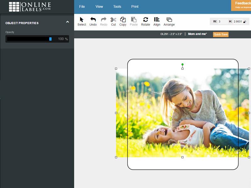 Editing Images & Clipart in Your Designs - Maestro Label Designer
